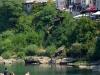 Brückenspringer von Mostar 8/11