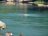 Brückenspringer von Mostar 11/11